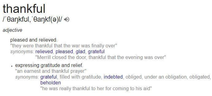 definition of being thankful according to google
