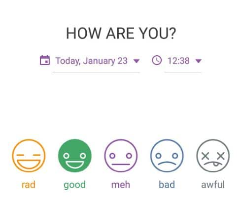 daylio review 5 mood emoji scale