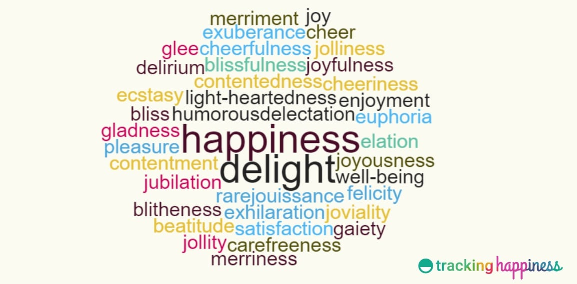 happiness definitions and synonyms